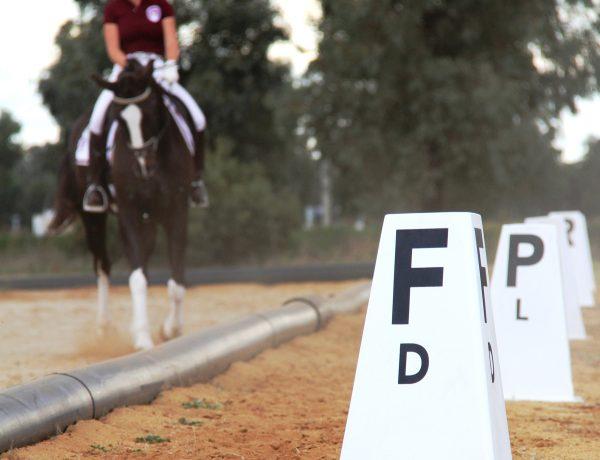 Elmore Equestrian Park - Dressage Arena